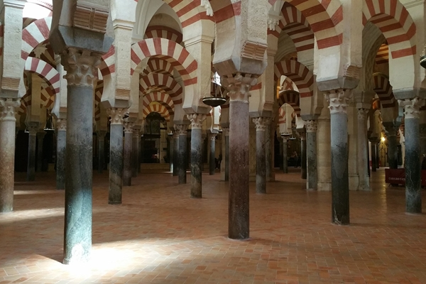 Turismo naturaleza y caza. Mezquita de Cordoba